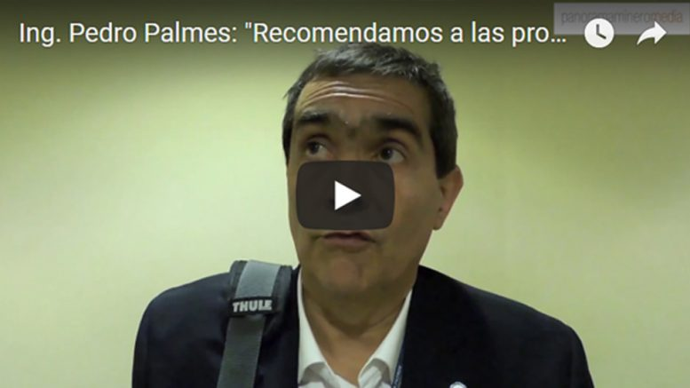 pedropalmes_videoencabez